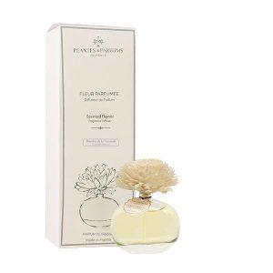 fleur parfumée, diffuseur de parfums senteur récolte de la lavande