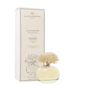 fleur parfumée, diffuseur de parfums senteur naturelle verveine fraîche