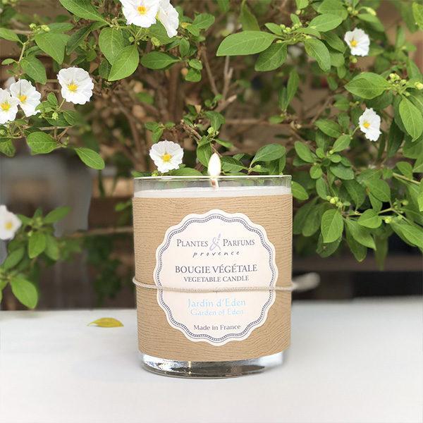 bougie parfumée végétale jardin d'eden