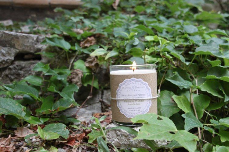 a propos de nos bougies naturelles parfum es plantes. Black Bedroom Furniture Sets. Home Design Ideas