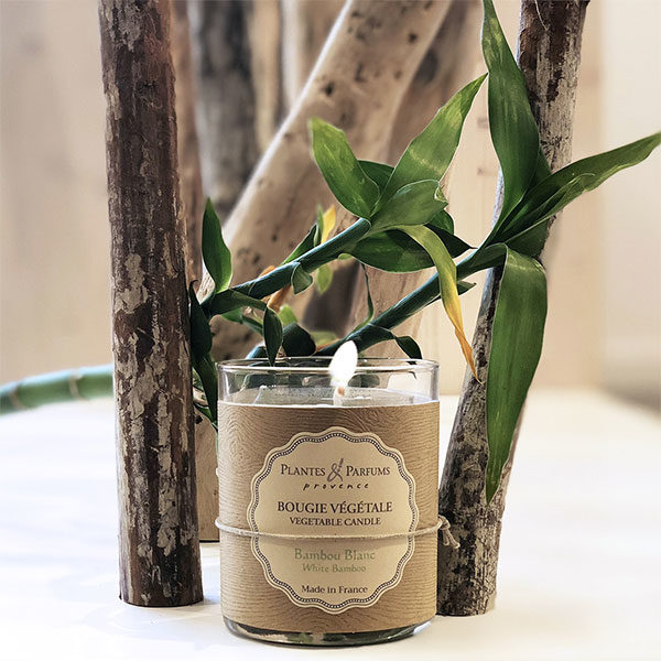 bougie parfumée végétale bambou blanc