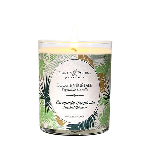 bougie parfumée végétale escapade tropicale