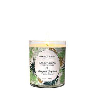 bougie parfumée végétale 75gr escapade tropicale