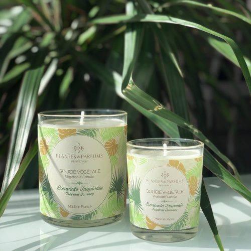 bougie parfumée estivale, bougie décorative, bougie senteur tropicale, bougie naturelle, bougie végétale, escapade tropicale