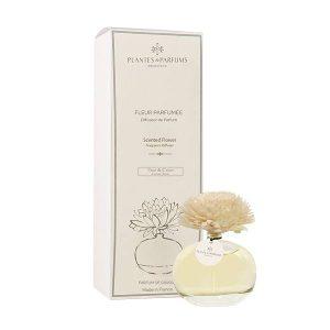 Fleur Aromatique Fleur de Coton