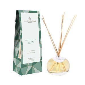 Bouquet Parfumé 100ml - Bois Doré
