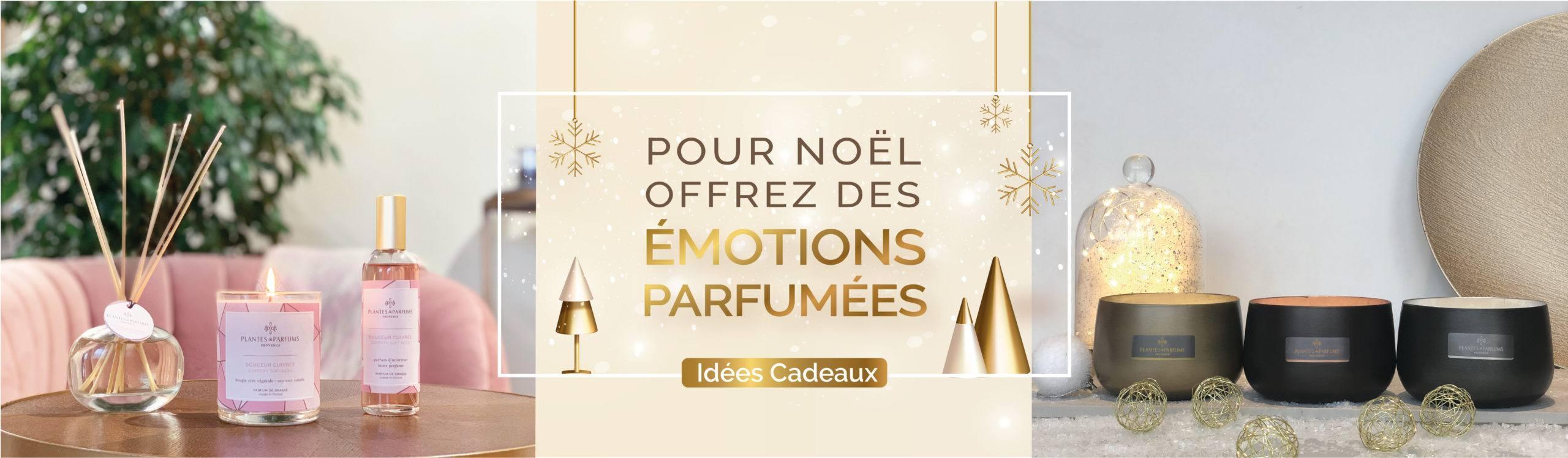 Banniere_Cadeau_1120_FR