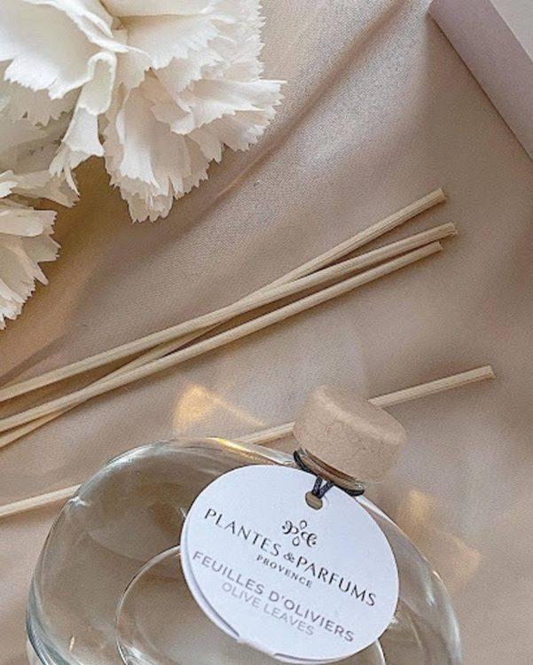 Diffuseur feuilles d'oliviers - Plantes & Parfums