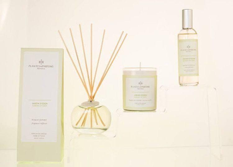 Ambiance cocooning parfum jardin d'eden - Plantes&Parfums