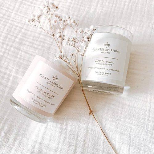 bougie-fleur-de-coton-et-bambou-blanc-plantesparfums