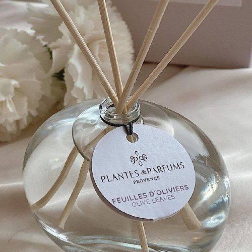 Combien de temps dure un parfum d'intérieur - Plantes&Parfums